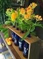Natur:re Çevre Dostu 4'lü Şişeli Vazo Mavi